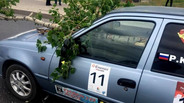 В Волгограде девушку, которую едва не убило веткой дерева, перевели в реанимацию