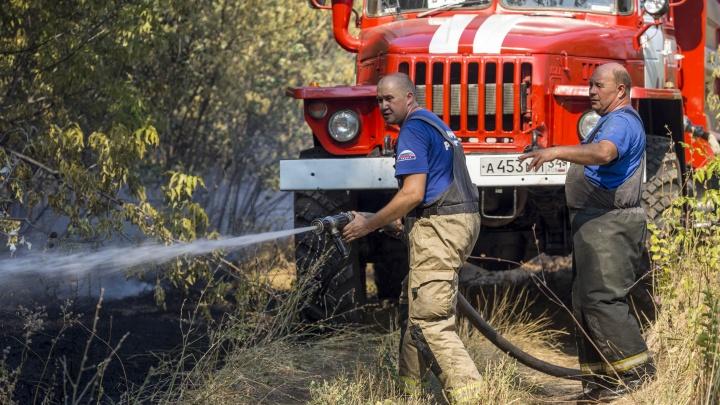 «Дым километров за 30 видно»: под Волгоградом тушат пожар в Волго-Ахтубинской пойме