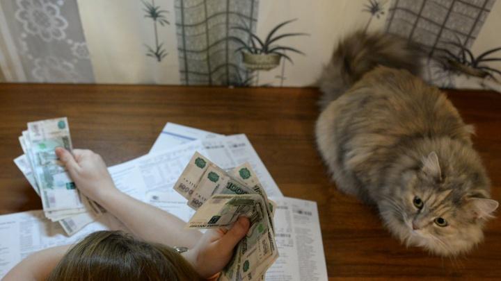Екатеринбуржец перепутал управляющие компании и потерял 81 тысячу рублей. Что делать в такой ситуации?