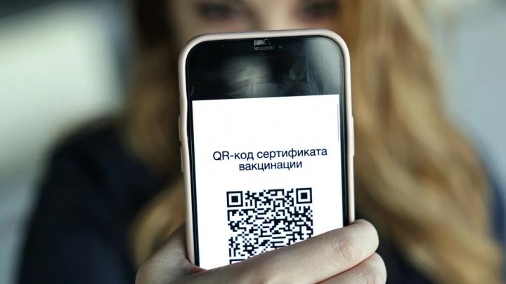 В Свердловской области вводят QR-коды. Где их искать тем, кто болел, привился или ничего не делал