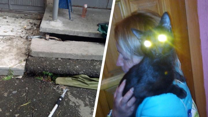 «Плиту подняли домкратом, котю вытащили удочкой»: зооспасатель из Екатеринбурга разобрал крыльцо, чтобы достать кота