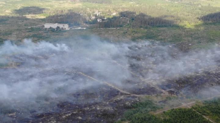 Тушили с вертолета, корабля и самолета: хроника гигантского лесного пожара в Самарской области