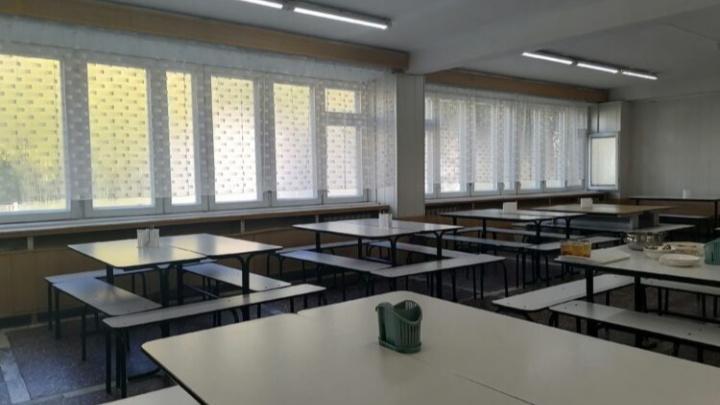 Началка школы Железногорска ушла на дистанционку из-за острых болей у 46 детей — возможно отравление