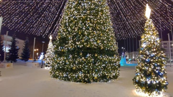 «Залезли по каркасу»: подсветку центральной елки Архангельска вновь повредили
