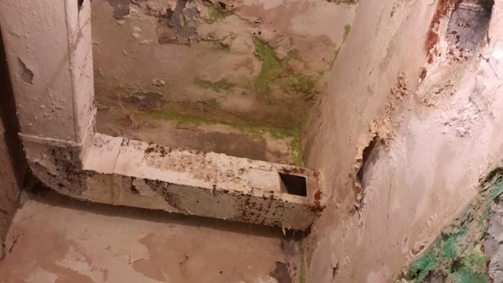 На Дону сироты получили квартиры с плесенью и канализационными люками в коридорах