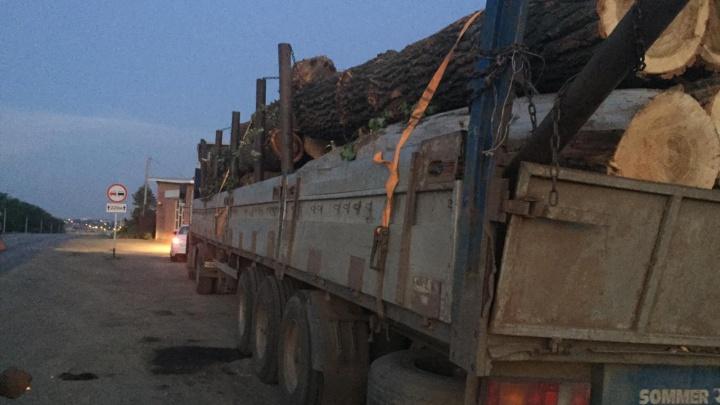 Бревно сорвалось с грузовика под Ростовом, спровоцировав массовое ДТП. Есть погибший