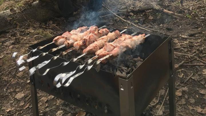 Пожароопасный сезон: где в Ярославской области можно жарить шашлыки, чтобы не нарваться на штраф