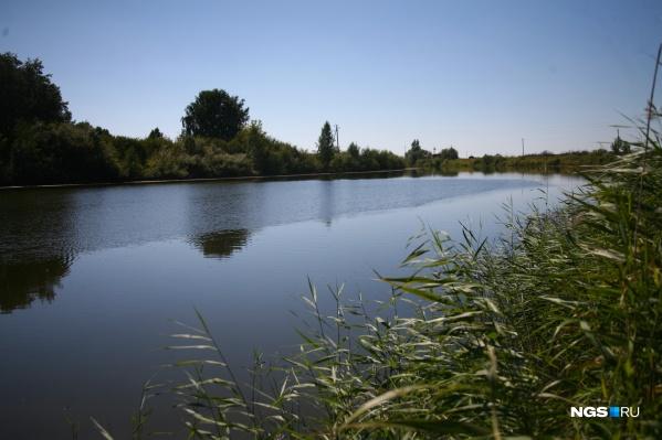 Подросток утонул во время купания в озере в Тогучинском районе