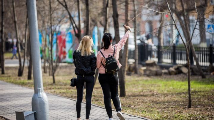Вернется ли в Новосибирск летнее тепло? Изучаем прогноз погоды на неделю