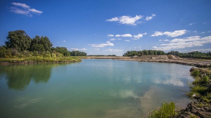 Двое детей утонули в пруду под Новосибирском. СК начал проверку