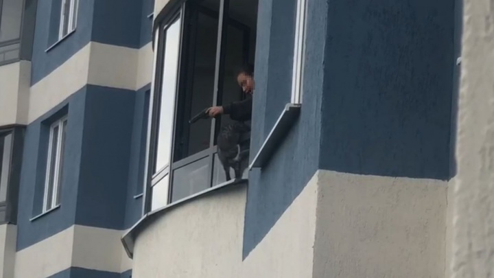 «Била пистолетом и стреляла в животное»: в Екатеринбурге девочка угрожала сбросить кошку с 9-го этажа