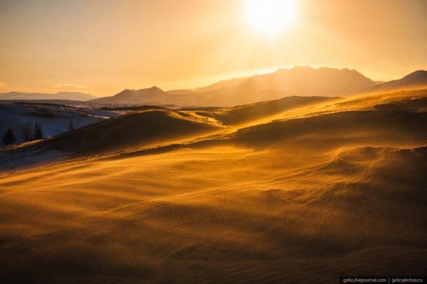 Посреди тайги в Забайкальском крае раскинулась пустыня с самыми настоящими оазисами, барханами и песчаными бурями