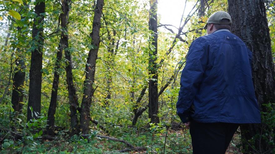 Жителям Самарской области запретили заходить в лес