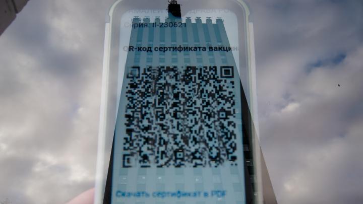 Проверили, можно ли пройти в общественные места Архангельска с чужим QR-кодом