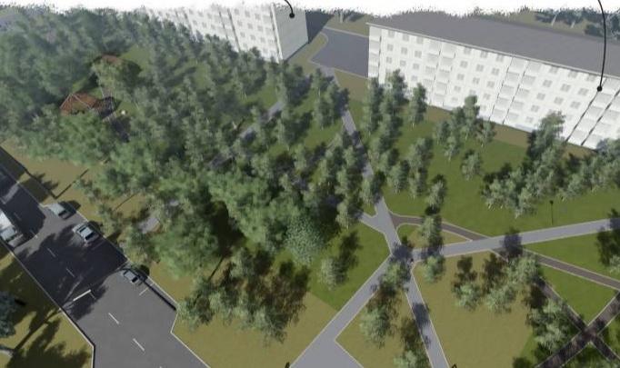 Как могут благоустроить зеленую зону для прогулок на окраине Архангельска: смотрим эскиз