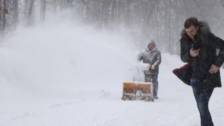Синоптики пообещали аномально снежную зиму в России