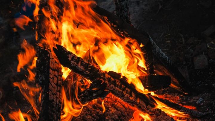 Власти Кузбасса ввели особый противопожарный режим. Рассказываем, что нельзя делать