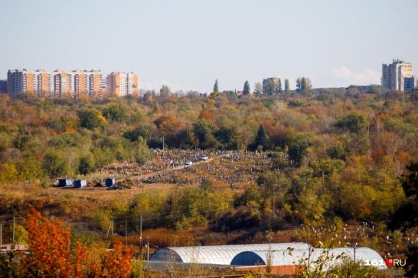 Северное кладбище утопает в деревьях