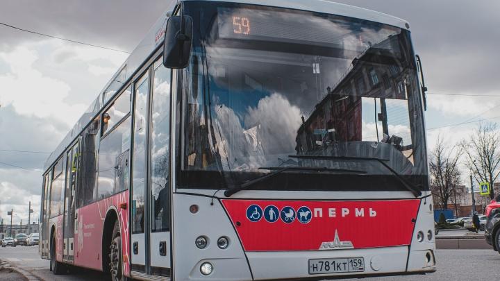 В Перми с 1 ноября изменят расположение нескольких автобусных остановок. Схемы