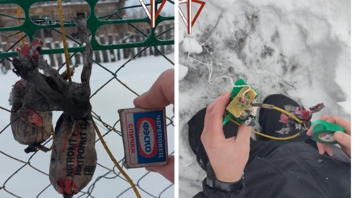 Под Новосибирском женщина купила уголь для печки и нашла в нем взрывчатку