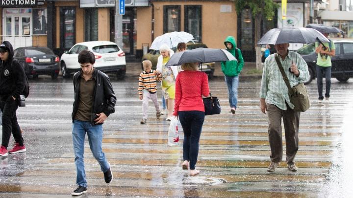 Приход весны замедлили дожди: какой будет погода в Ростове на этой неделе