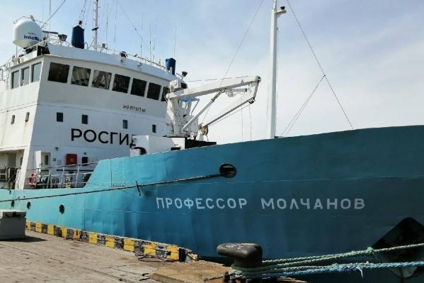 Экспедиция вышла в Норвежское море на «Профессоре Молчанове»