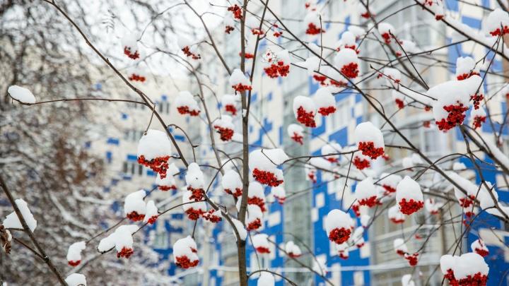 Если сегодня подморозило: погода на Рождество покажет, какой будет весна