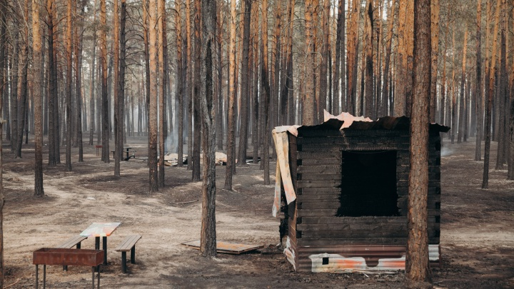 «Мы бы животных не бросили»: как тюменские базы отдыха пережили жуткий лесной пожар
