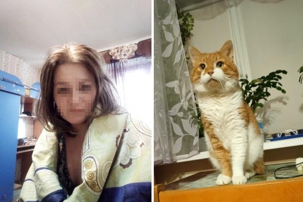 Как пишут авторы петиции, в августе–сентябре в интернете разместили пять видеороликов с пытками кота