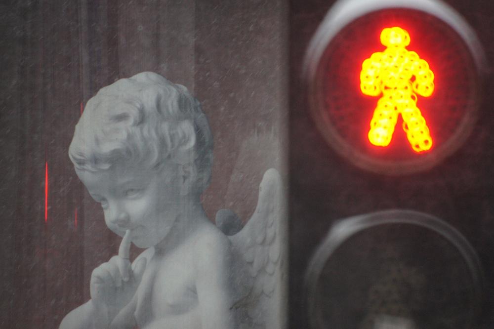 Обезьяний рефлекс на систему светофора. Сотрудников ЛГУ имени Пушкина разделили на цветных и ковид-диссидентов