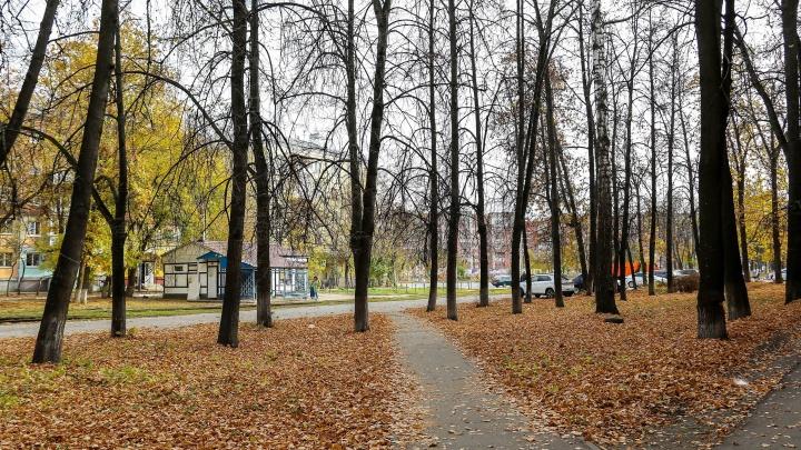 Потепление до +15 градусов ожидается в Нижегородской области к выходным