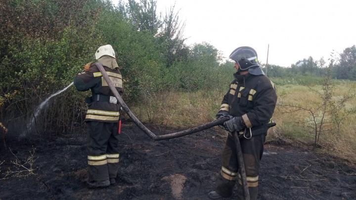 В Волгоградской области пастуха подозревают в поджоге степи