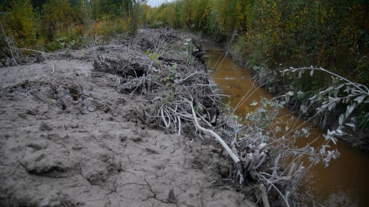 Будто черно-белый эффект в фотошопе: очередное загрязнение бетоном возле реки Юрас