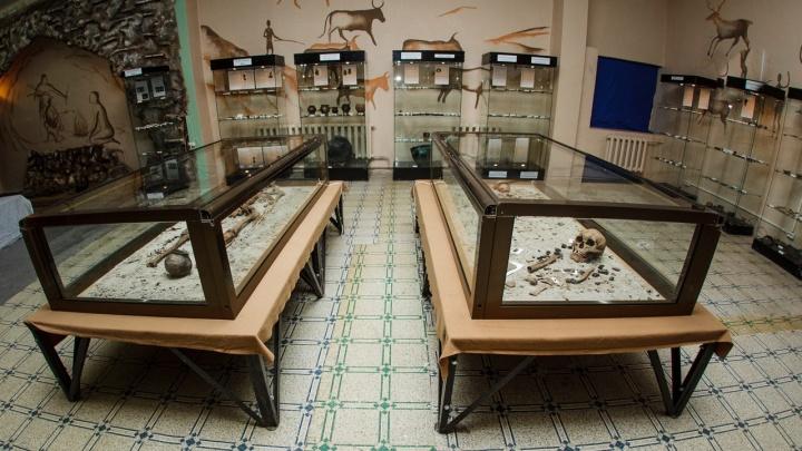Владельца тюменского музея проверяют из-за незаконных раскопок. У него изъято 1,5 тысячи предметов