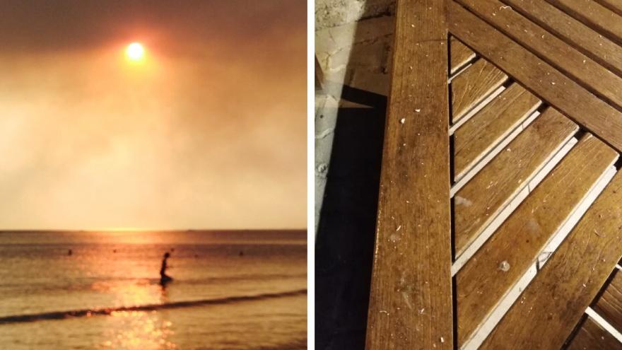 «Небо заволокло дымом, а в море жженая хвоя»: ярославна об отдыхе в Турции во время сильных пожаров