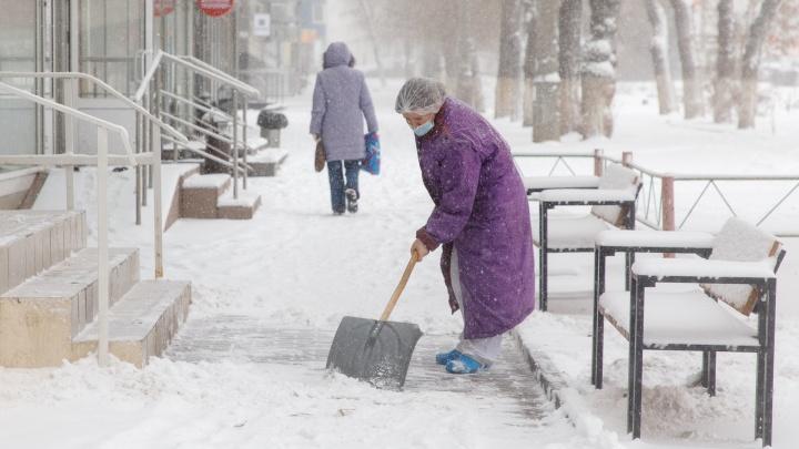 «Для января это нормально»: синоптики не признают аномальность снегопада в Волгограде