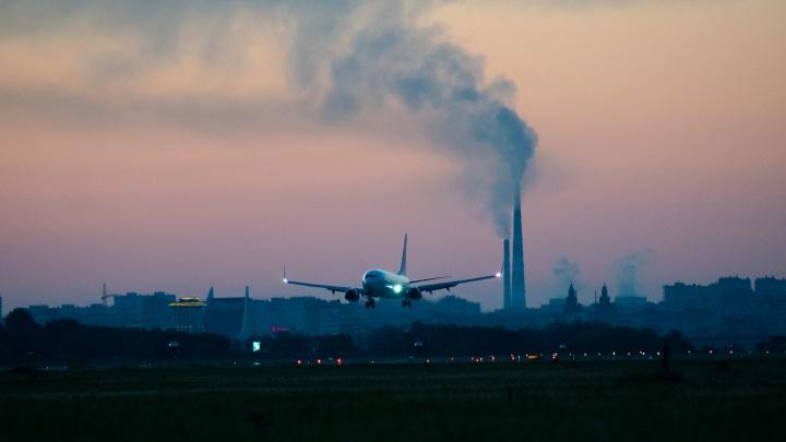 В Казахстан из Омска полетит разовый рейс
