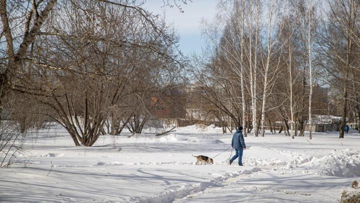 Независимая экспертиза оценила скандальный пустырь на Демакова в 228млн— мэрия продала его на 74млн дешевле