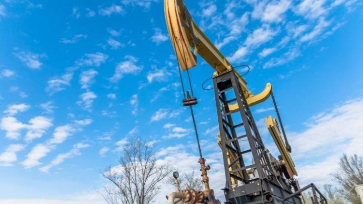 В Свердловской области есть нефть? Отвечает губернатор