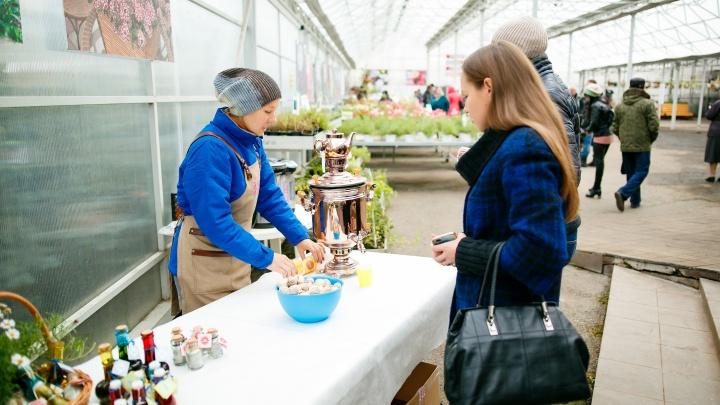 «Плодовое» подведет итоги дачного сезона на масштабном мероприятии