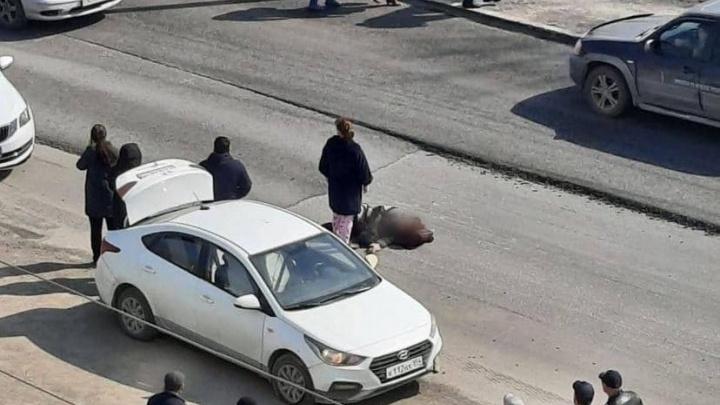 В Ленинском районе «Хендай» сбил женщину на пешеходном переходе— ее увезли в больницу