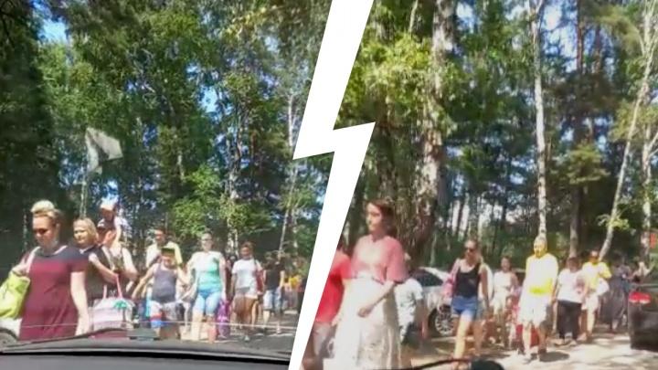 Сотни людей отправились на пляж Академгородка — толпа попала на видео