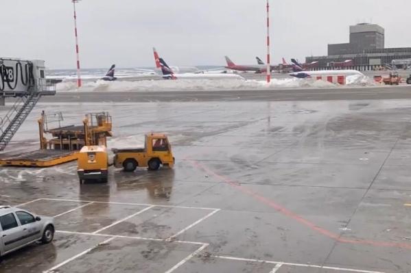 За самолетом жители Екатеринбурга, которые планируют улететь в Занзибар, пока наблюдают только из окна здания аэропорта
