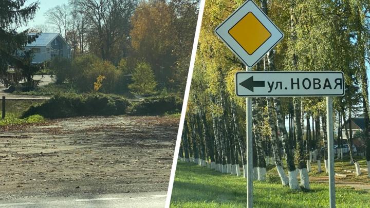 «Указатели есть, а дороги нет»: в Ярославской области обнаружили улицу-призрак