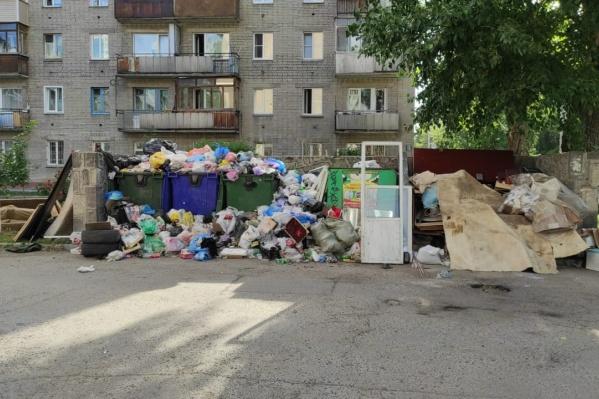 Столько мусора на прошлой неделе накопилось на улице Крылова, 63