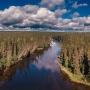 Николай Кротов: «Всем участникам лесных отношений нужен доступ к открытой и достоверной информации»