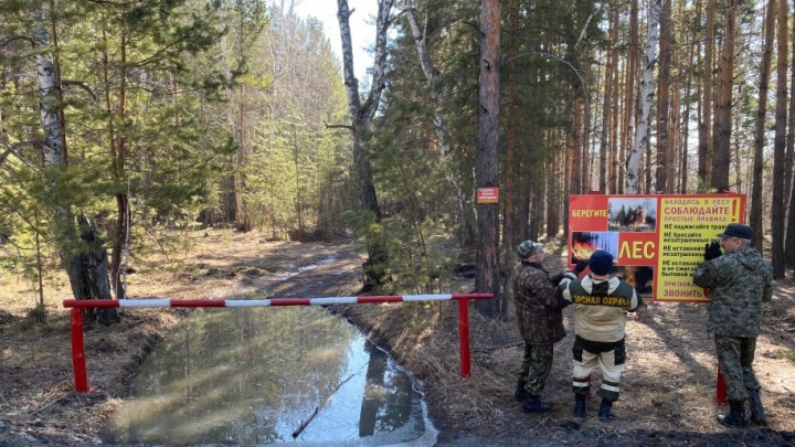 Власти Кургана продлили запрет на посещение лесов