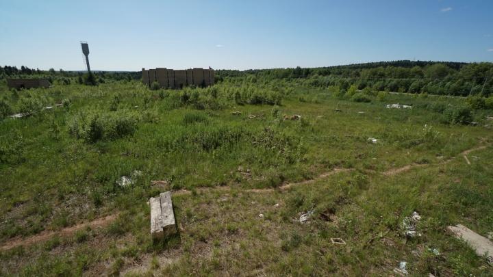 В мэрии рассказали о ходе работ на Восточном кладбище — ранее на вопросы о нем отвечал губернатор