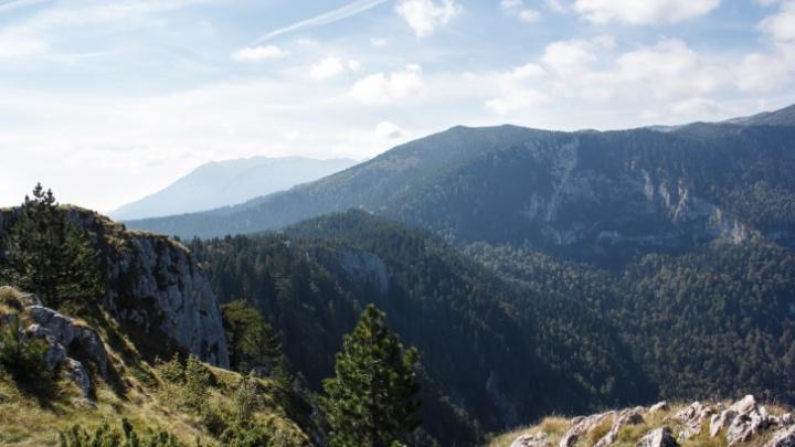 Бизнесмен из Тюменской области и бывший подчиненный Абрамовича получили «золотые паспорта» Черногории