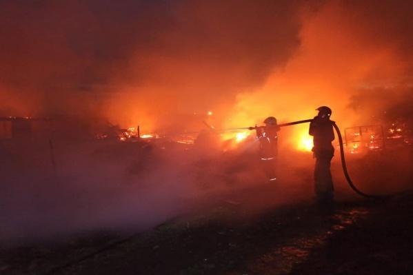 Пожарные борются с пламенем на ферме